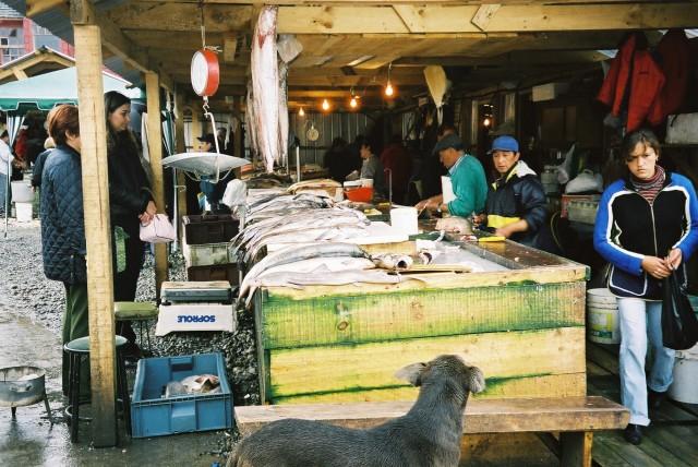 Angelmó fish market