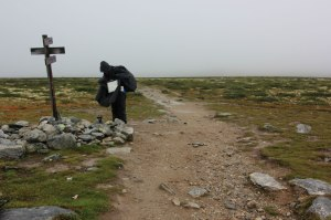 Route-finding on Dovrefjell
